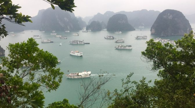 Wonderful sightseeing  cruise around Ha Long Bay, Vietnam