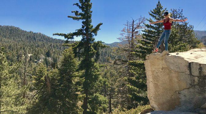 Palm Springsas ir Joshua tree nacionalinis parkas Pietų Kalifornijoje, JAV